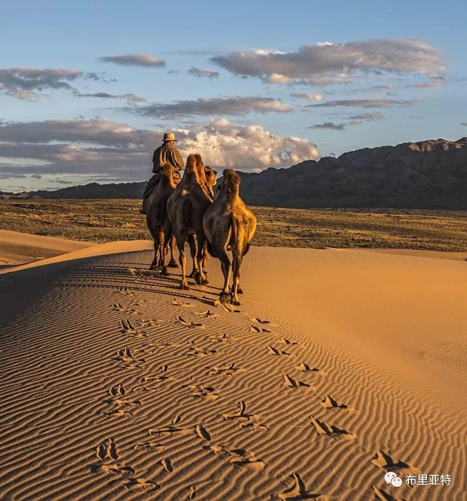 蒙古摄影师巴特扎亚摄影作品欣赏 第18张 蒙古摄影师巴特扎亚摄影作品欣赏 蒙古文化
