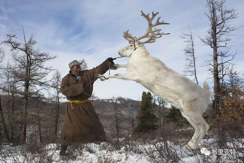 蒙古摄影师巴特扎亚摄影作品欣赏 第25张 蒙古摄影师巴特扎亚摄影作品欣赏 蒙古文化