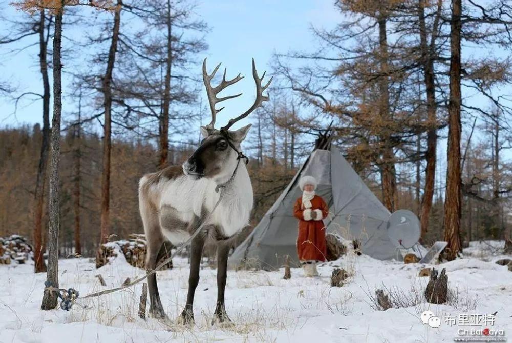 蒙古摄影师巴特扎亚摄影作品欣赏 第26张 蒙古摄影师巴特扎亚摄影作品欣赏 蒙古文化
