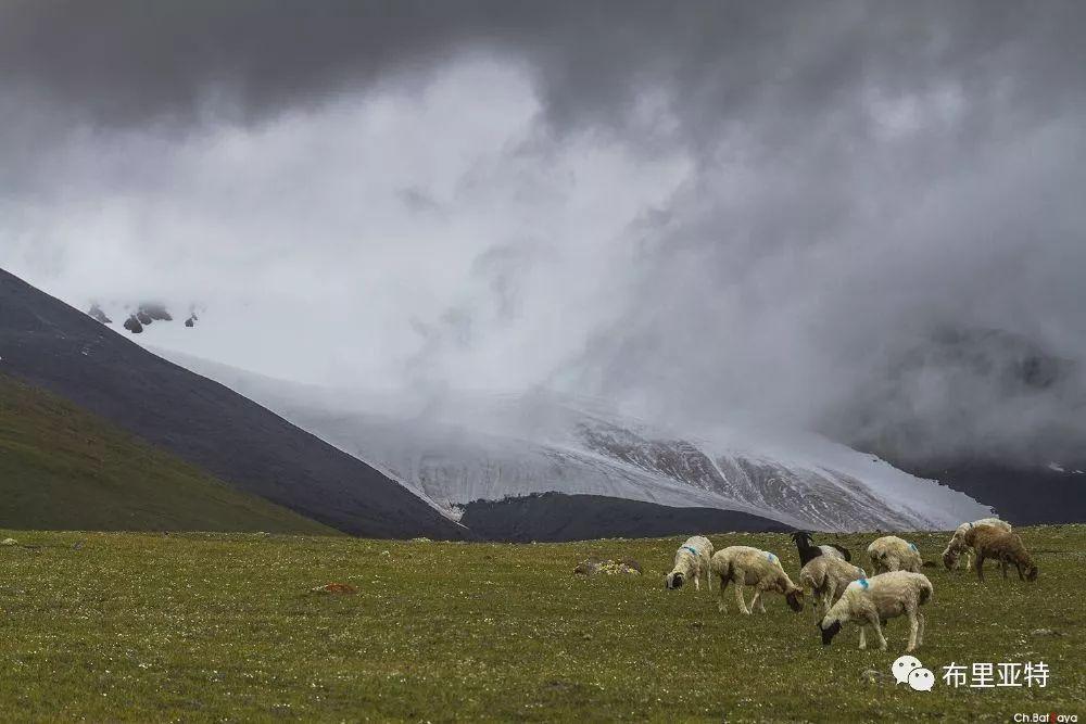蒙古摄影师巴特扎亚摄影作品欣赏 第42张 蒙古摄影师巴特扎亚摄影作品欣赏 蒙古文化