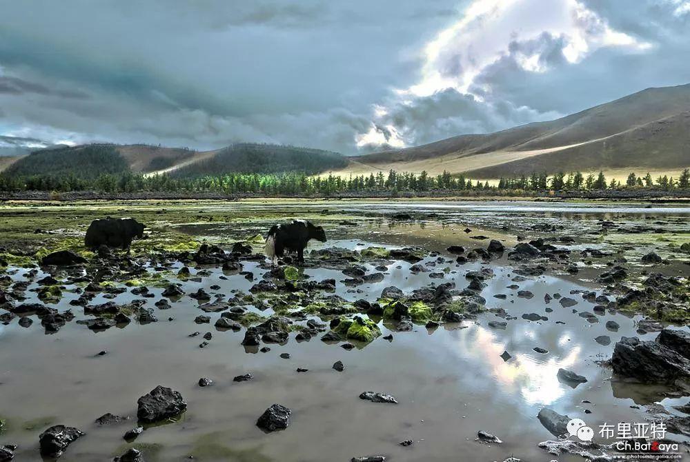 蒙古摄影师巴特扎亚摄影作品欣赏 第44张 蒙古摄影师巴特扎亚摄影作品欣赏 蒙古文化