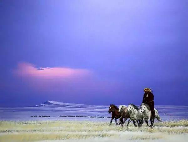 画家道尔吉德日木画笔下的蒙古马,简直栩栩如生 第6张