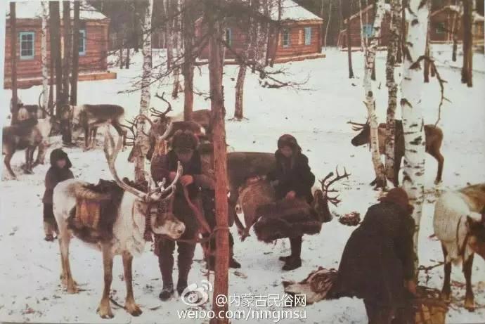 【组图】80年代的内蒙古,致我们的纯真年代! 第12张