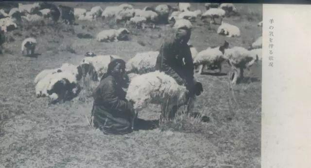 老明信片:30年代的内蒙古  (组图) 第6张 老明信片:30年代的内蒙古  (组图) 蒙古文化