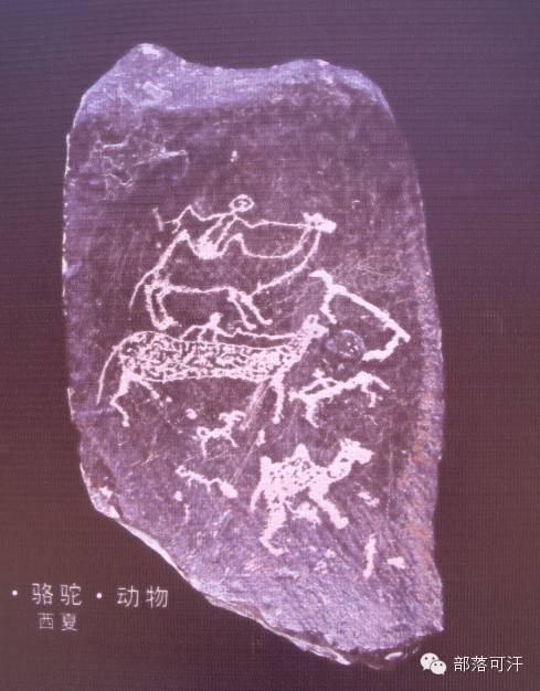 内蒙古出土的历史文物部分图片资料 第33张