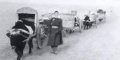 【蒙古图片】当年赴内蒙古插队知青,满满的都是回忆(图集) 第21张 【蒙古图片】当年赴内蒙古插队知青,满满的都是回忆(图集) 蒙古文化