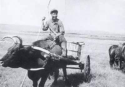 【蒙古图片】当年赴内蒙古插队知青,满满的都是回忆(图集) 第28张 【蒙古图片】当年赴内蒙古插队知青,满满的都是回忆(图集) 蒙古文化