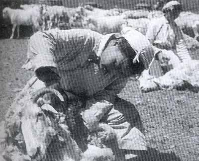 【蒙古图片】当年赴内蒙古插队知青,满满的都是回忆(图集) 第59张 【蒙古图片】当年赴内蒙古插队知青,满满的都是回忆(图集) 蒙古文化