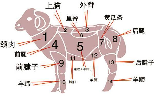蒙古人吃羊肉原来有这么多禁忌 第1张