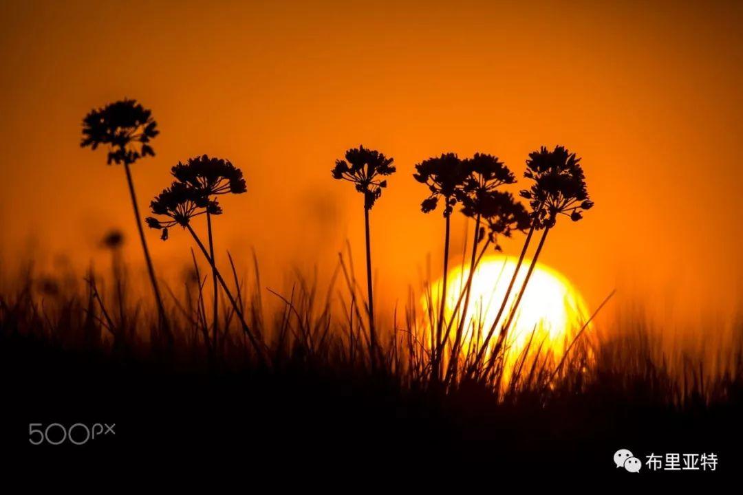 旅行摄影师甘乌力吉的摄影作品欣赏,太震撼! 第4张