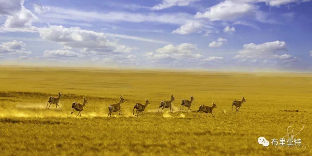 旅行摄影师甘乌力吉的摄影作品欣赏,太震撼! 第9张