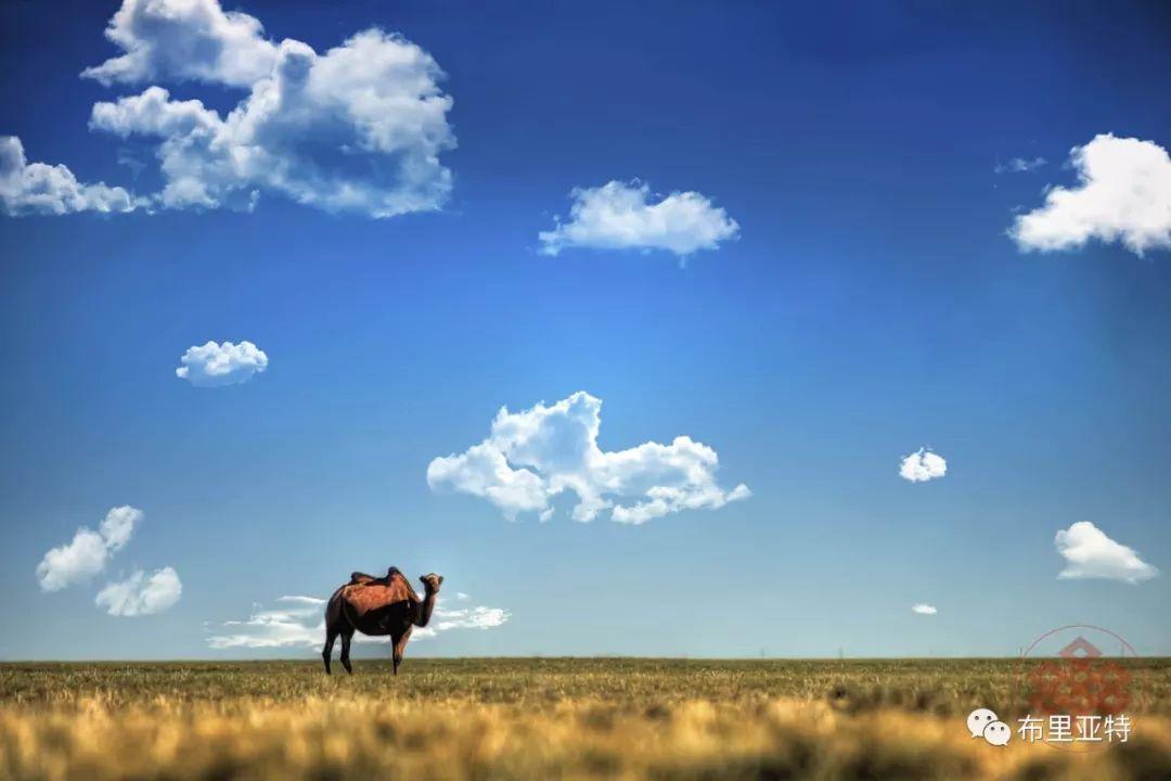 旅行摄影师甘乌力吉的摄影作品欣赏,太震撼! 第6张