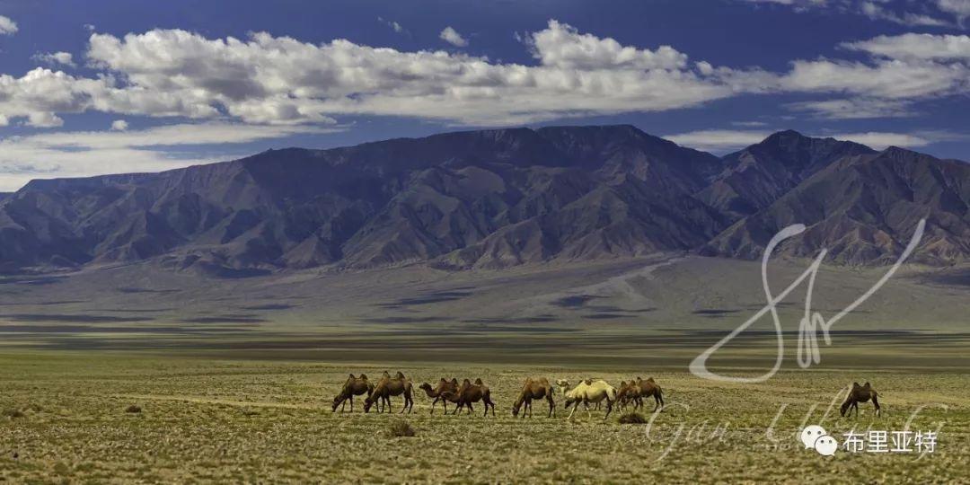 旅行摄影师甘乌力吉的摄影作品欣赏,太震撼! 第12张