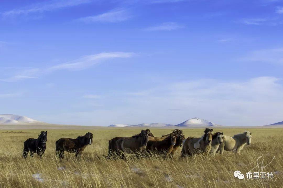 旅行摄影师甘乌力吉的摄影作品欣赏,太震撼! 第11张