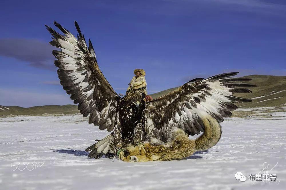 旅行摄影师甘乌力吉的摄影作品欣赏,太震撼! 第34张