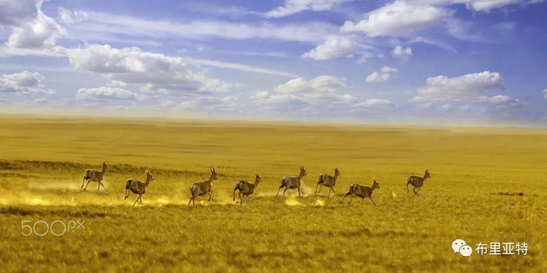 旅行摄影师甘乌力吉的摄影作品欣赏,太震撼! 第38张