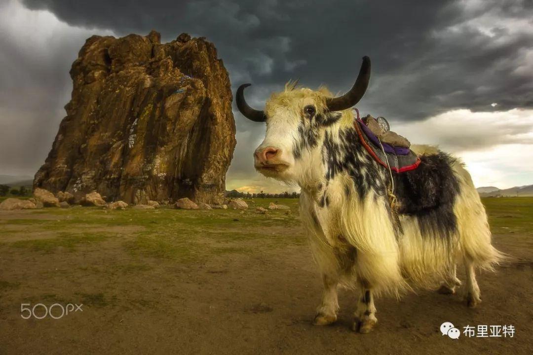 旅行摄影师甘乌力吉的摄影作品欣赏,太震撼! 第43张