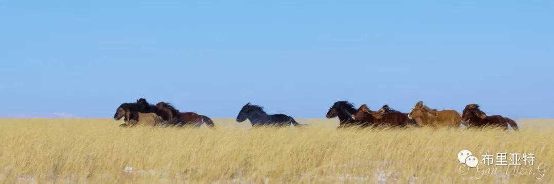 旅行摄影师甘乌力吉的摄影作品欣赏,太震撼! 第67张