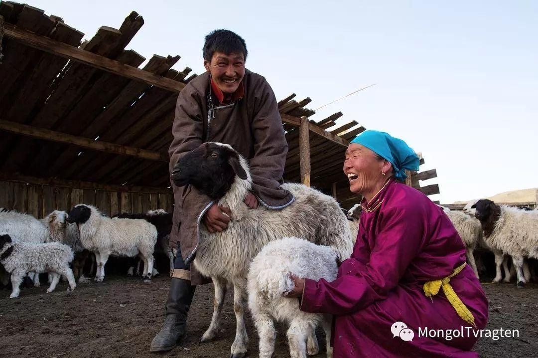 镜头中的蒙古脸庞:摄影师P·杭盖呼摄影作品 第11张 镜头中的蒙古脸庞:摄影师P·杭盖呼摄影作品 蒙古文化