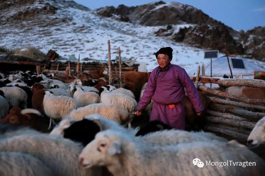 镜头中的蒙古脸庞:摄影师P·杭盖呼摄影作品 第15张 镜头中的蒙古脸庞:摄影师P·杭盖呼摄影作品 蒙古文化