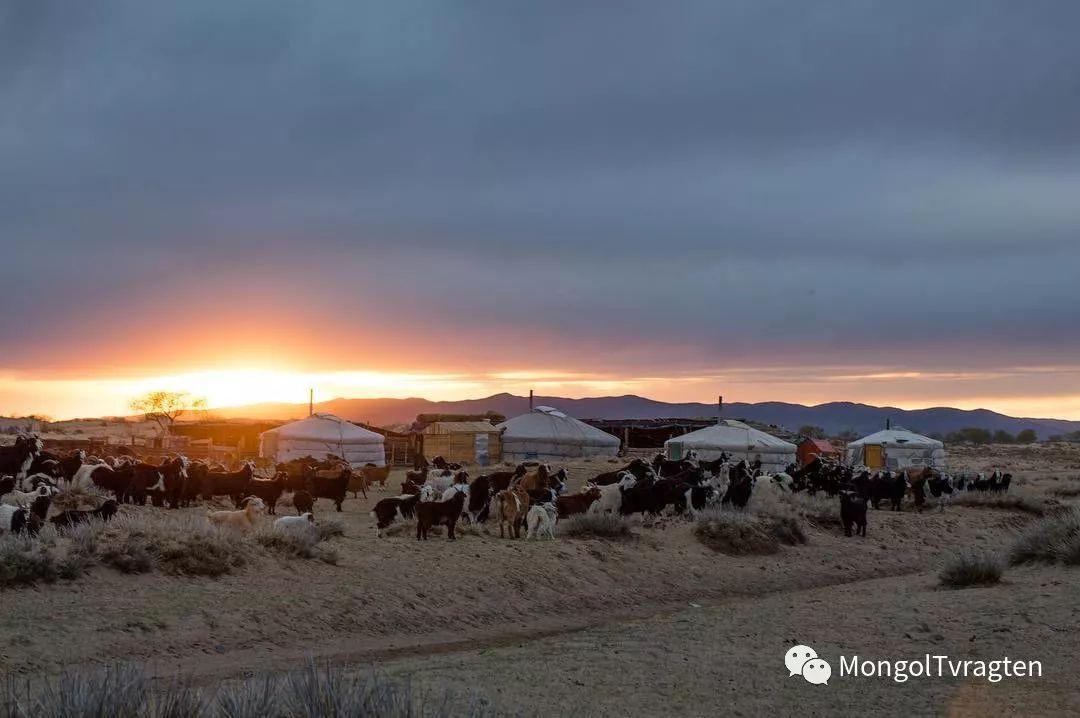 镜头中的蒙古脸庞:摄影师P·杭盖呼摄影作品 第25张 镜头中的蒙古脸庞:摄影师P·杭盖呼摄影作品 蒙古文化