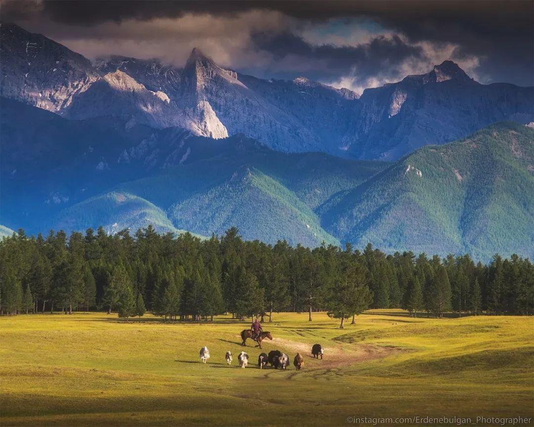 青年摄影师B·额尔登布勒干镜头下的蒙古大地,令人向往 第14张