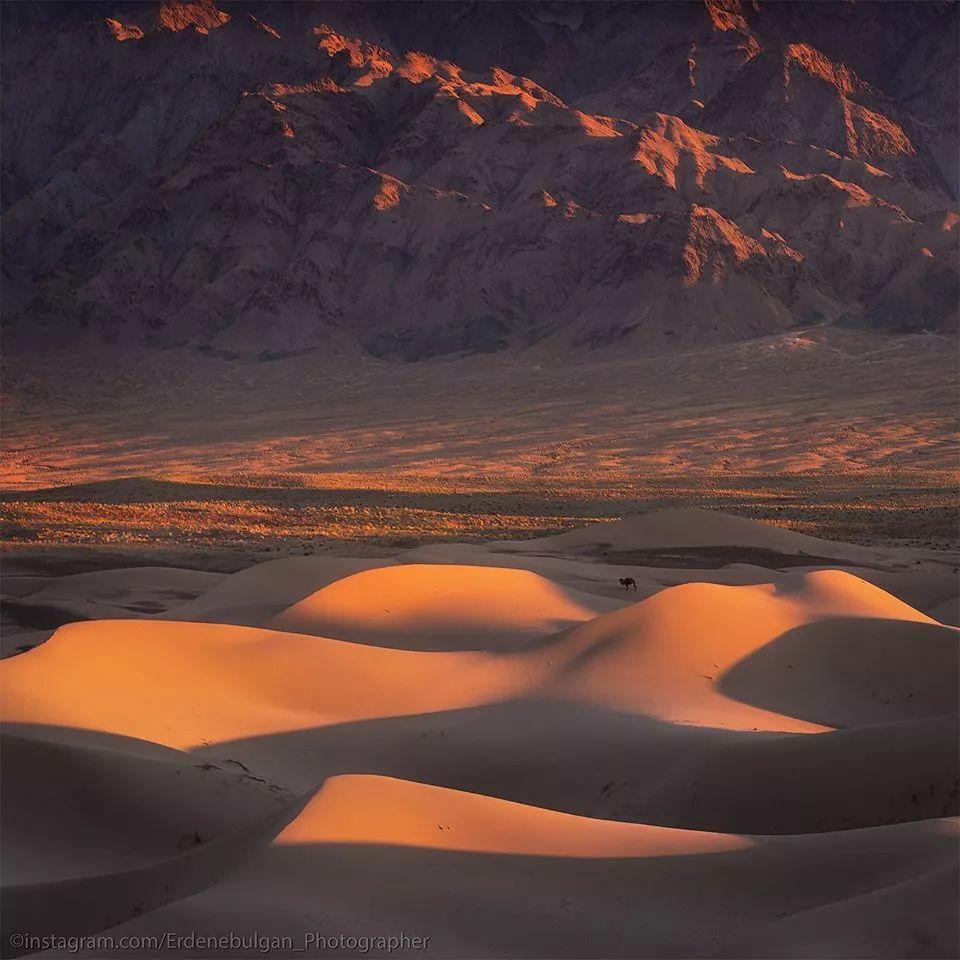 青年摄影师B·额尔登布勒干镜头下的蒙古大地,令人向往 第24张