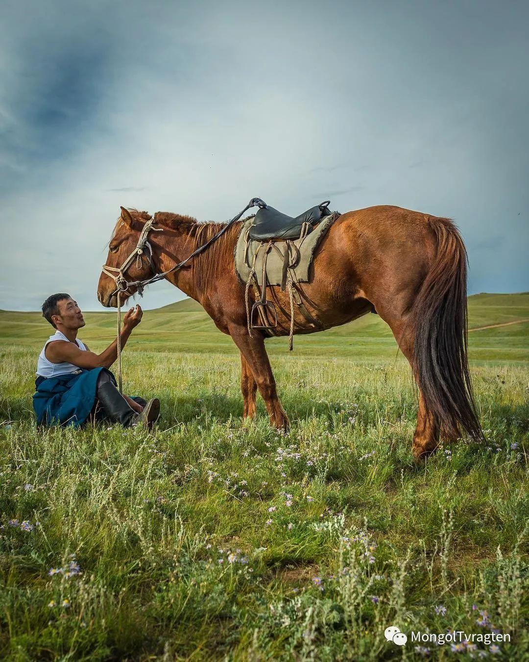 蒙古影像-- Henne Metz 第10张