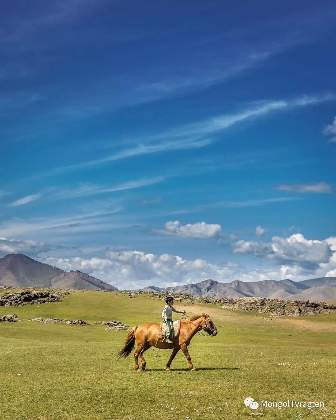 蒙古影像-- Henne Metz 第15张
