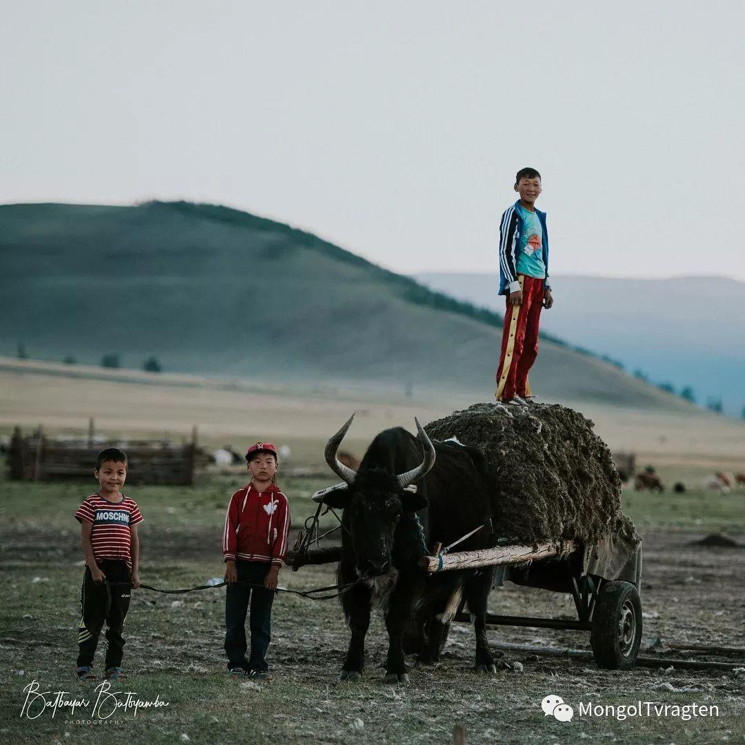蒙古影像-bat.byamba 一场震撼力极强的视觉盛宴…… 第5张 蒙古影像-bat.byamba 一场震撼力极强的视觉盛宴…… 蒙古文化