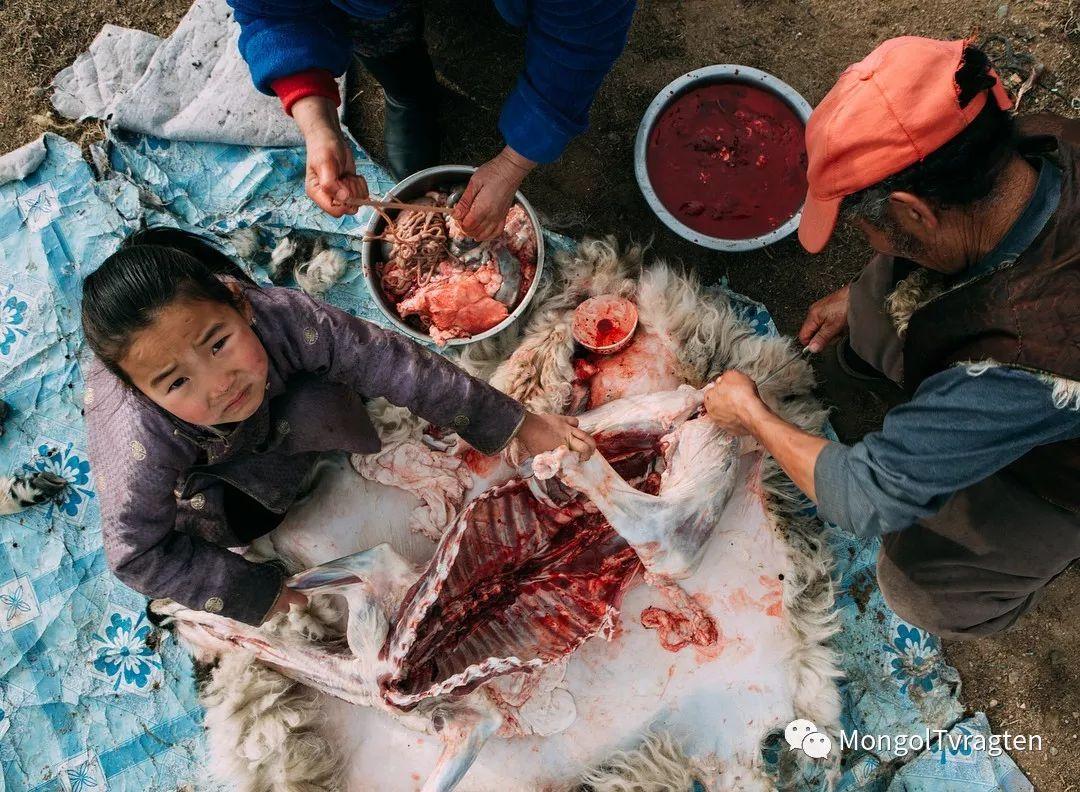 蒙古影像-- khangaikhuu.P 第18张 蒙古影像-- khangaikhuu.P 蒙古文化
