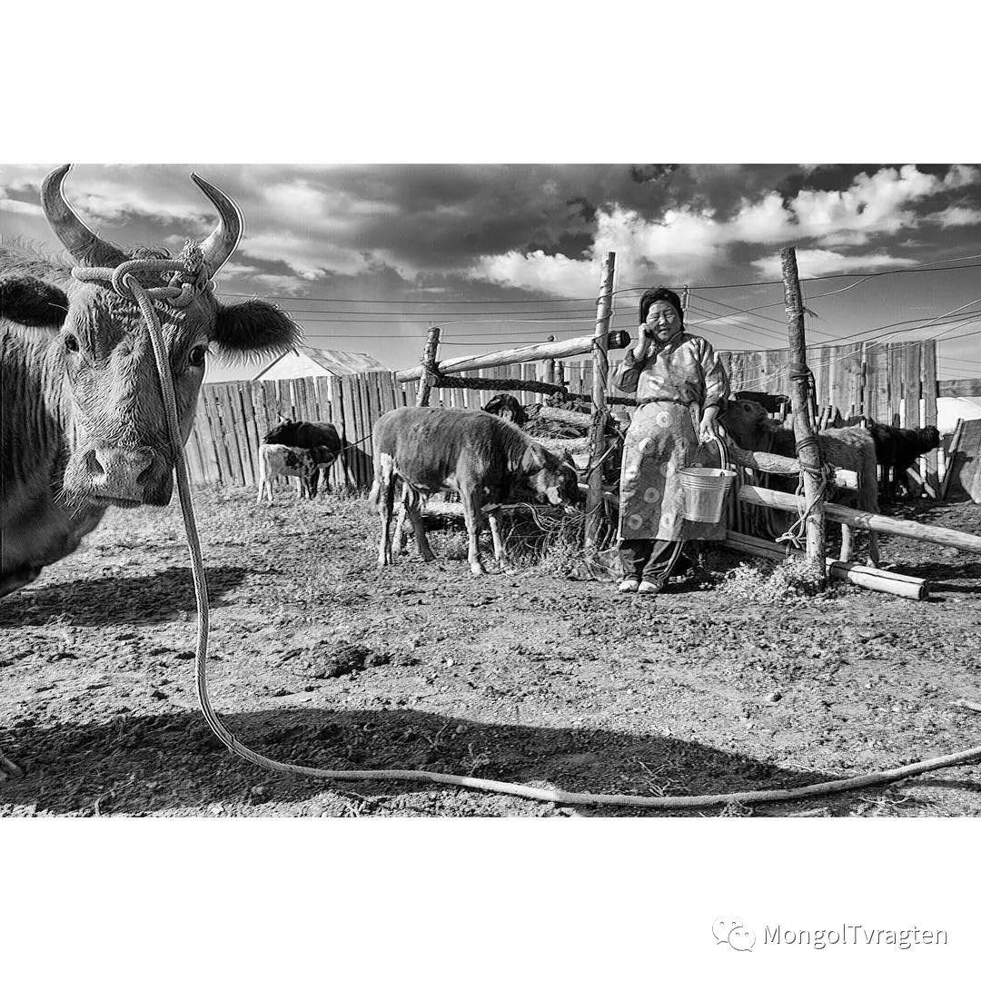 蒙古影像- c8x photography 第15张 蒙古影像- c8x photography 蒙古文化