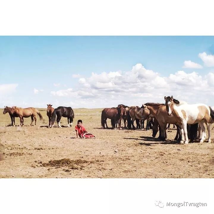 蒙古影像- c8x photography 第16张 蒙古影像- c8x photography 蒙古文化