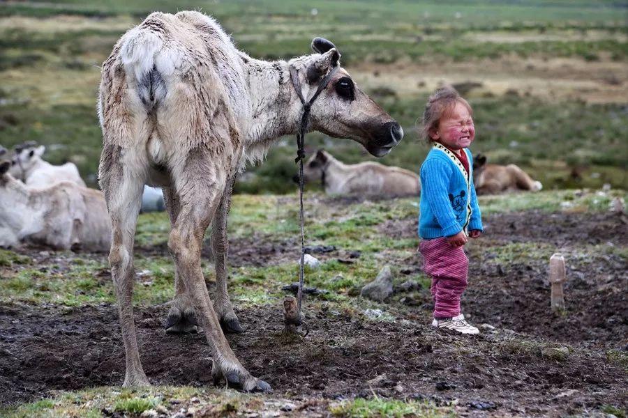 【蒙古影像】蒙古游牧生活 难以捉摸的美 第4张 【蒙古影像】蒙古游牧生活 难以捉摸的美 蒙古文化