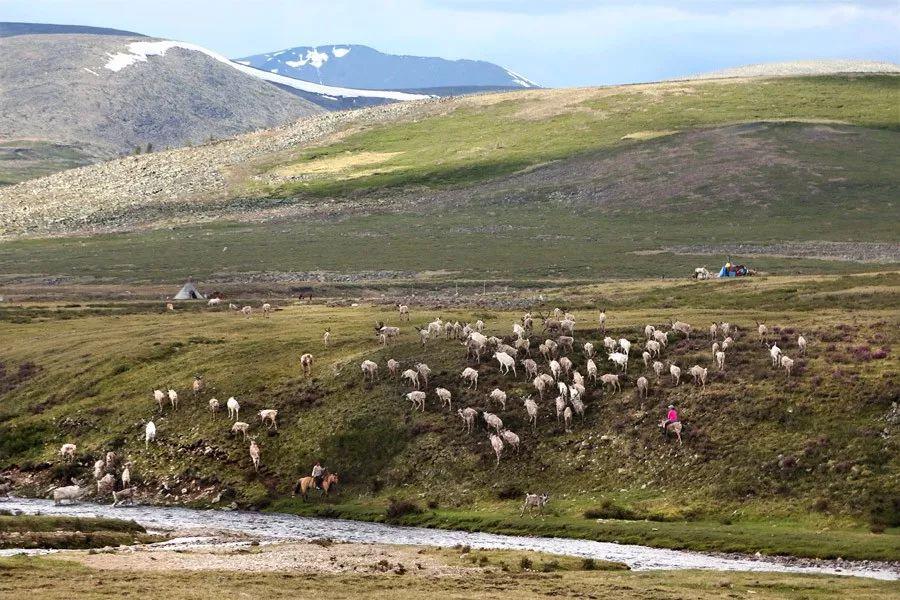 【蒙古影像】蒙古游牧生活 难以捉摸的美 第5张 【蒙古影像】蒙古游牧生活 难以捉摸的美 蒙古文化