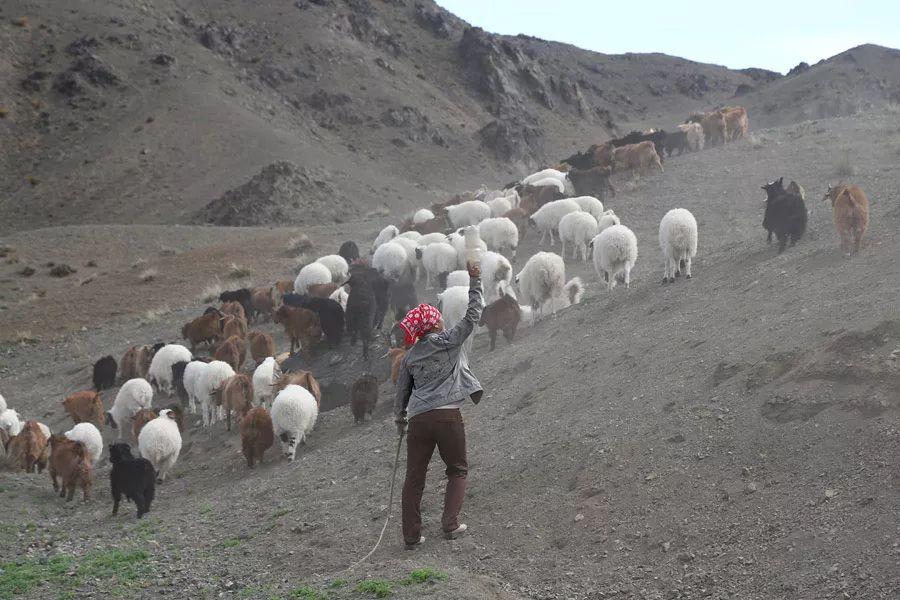 【蒙古影像】蒙古游牧生活 难以捉摸的美 第15张 【蒙古影像】蒙古游牧生活 难以捉摸的美 蒙古文化
