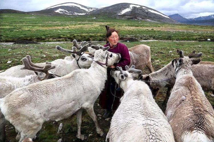 【蒙古影像】蒙古游牧生活 难以捉摸的美 第44张 【蒙古影像】蒙古游牧生活 难以捉摸的美 蒙古文化
