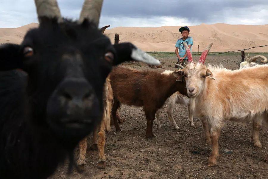 【蒙古影像】蒙古游牧生活 难以捉摸的美 第57张 【蒙古影像】蒙古游牧生活 难以捉摸的美 蒙古文化