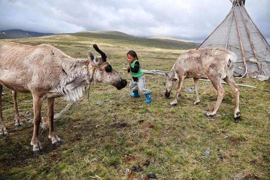 【蒙古影像】蒙古游牧生活 难以捉摸的美 第65张 【蒙古影像】蒙古游牧生活 难以捉摸的美 蒙古文化