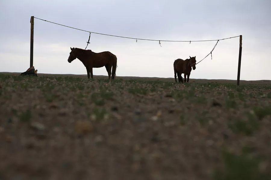 【蒙古影像】蒙古游牧生活 难以捉摸的美 第66张 【蒙古影像】蒙古游牧生活 难以捉摸的美 蒙古文化