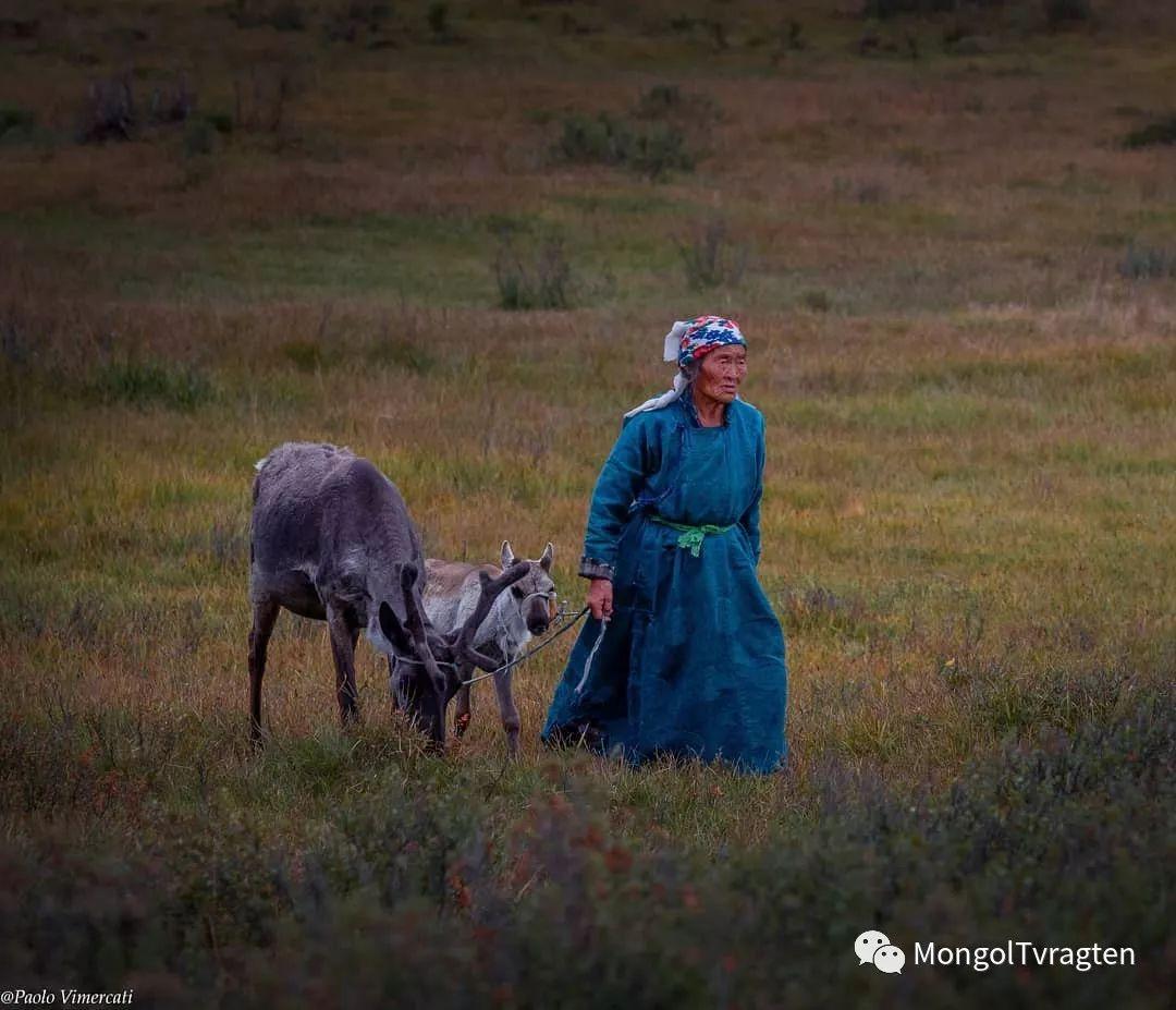 蒙古影像-Paolo Vimercati 第1张 蒙古影像-Paolo Vimercati 蒙古文化