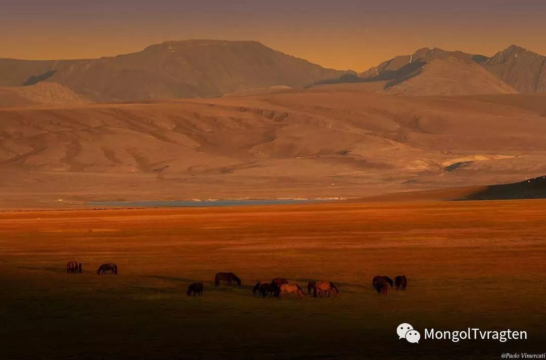 蒙古影像-Paolo Vimercati 第4张 蒙古影像-Paolo Vimercati 蒙古文化