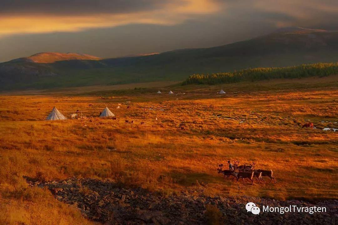 蒙古影像-Paolo Vimercati 第3张 蒙古影像-Paolo Vimercati 蒙古文化