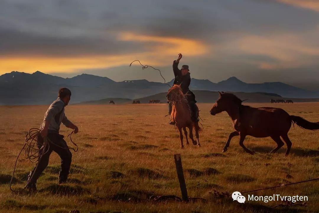 蒙古影像-Paolo Vimercati 第8张 蒙古影像-Paolo Vimercati 蒙古文化