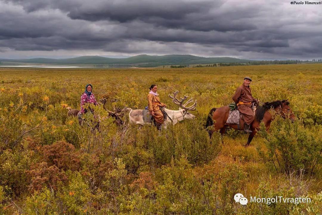 蒙古影像-Paolo Vimercati 第6张 蒙古影像-Paolo Vimercati 蒙古文化