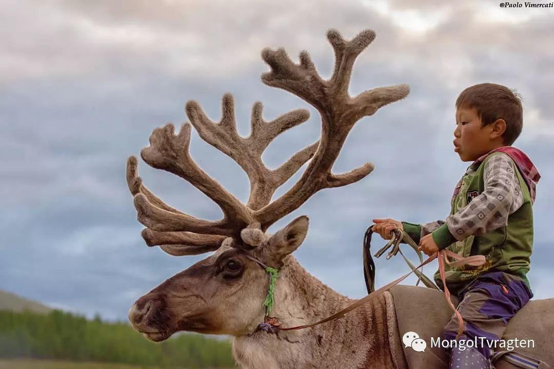 蒙古影像-Paolo Vimercati 第7张 蒙古影像-Paolo Vimercati 蒙古文化