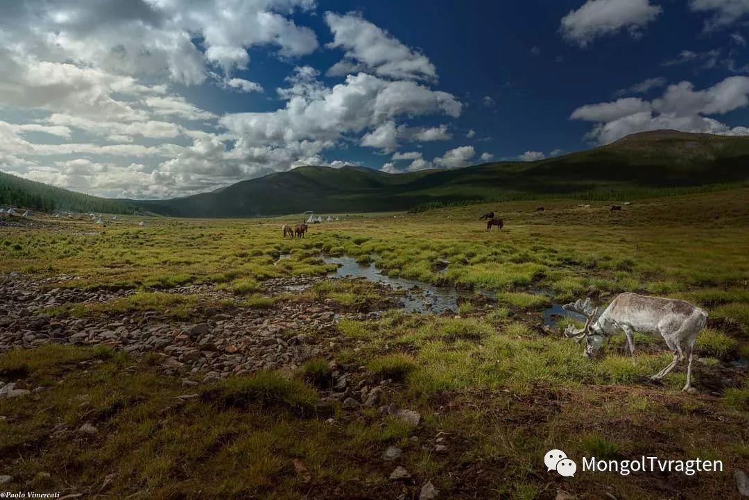 蒙古影像-Paolo Vimercati 第27张 蒙古影像-Paolo Vimercati 蒙古文化