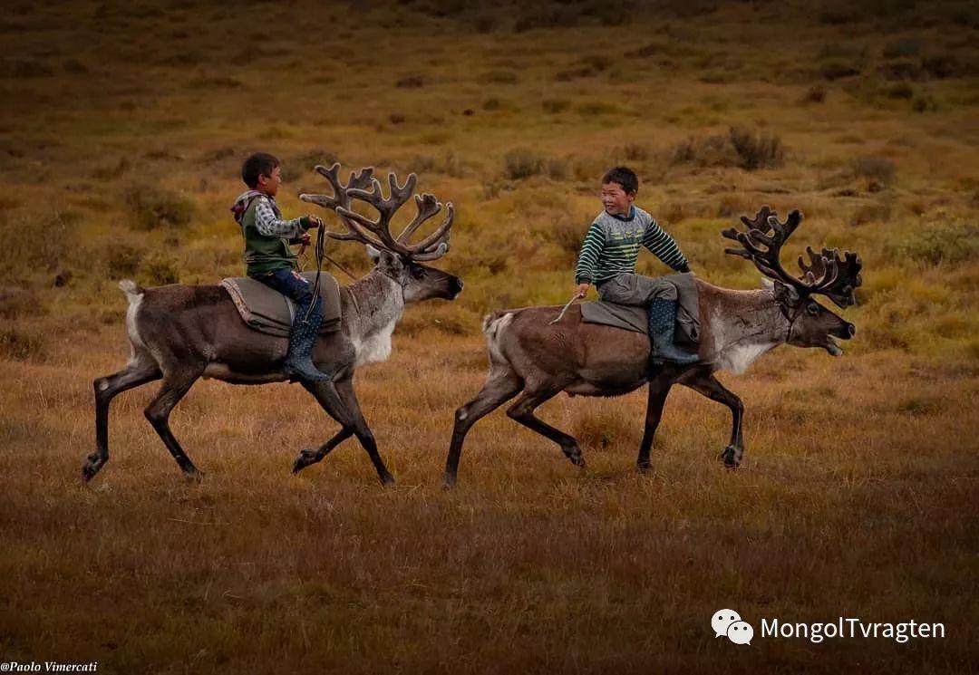 蒙古影像-Paolo Vimercati 第26张 蒙古影像-Paolo Vimercati 蒙古文化