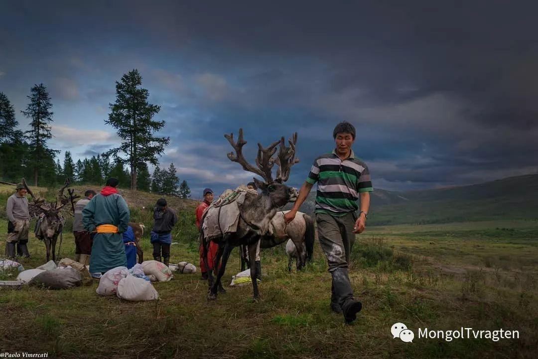 蒙古影像-Paolo Vimercati 第25张 蒙古影像-Paolo Vimercati 蒙古文化