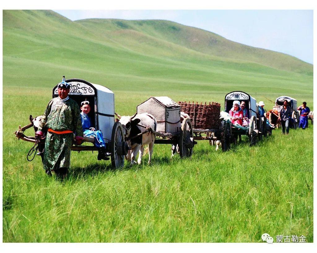 【蒙古影像】带你了解蒙古人的游牧生活 第1张 【蒙古影像】带你了解蒙古人的游牧生活 蒙古文化